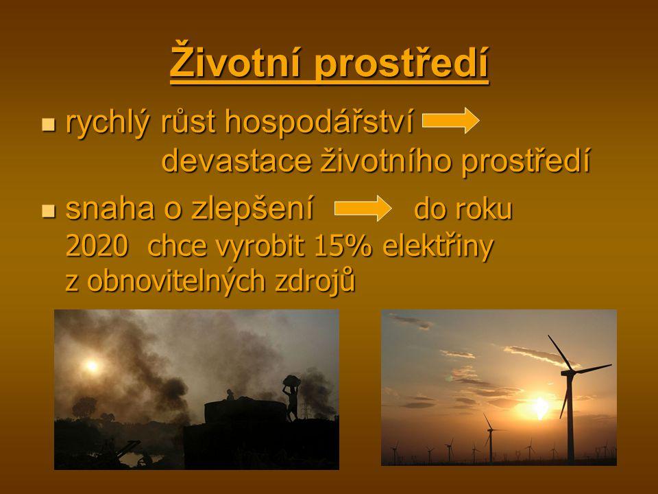 Životní prostředí rychlý růst hospodářství devastace životního prostředí rychlý růst hospodářství devastace životního prostředí snaha o zlepšení do roku 2020 chce vyrobit 15% elektřiny z obnovitelných zdrojů snaha o zlepšení do roku 2020 chce vyrobit 15% elektřiny z obnovitelných zdrojů