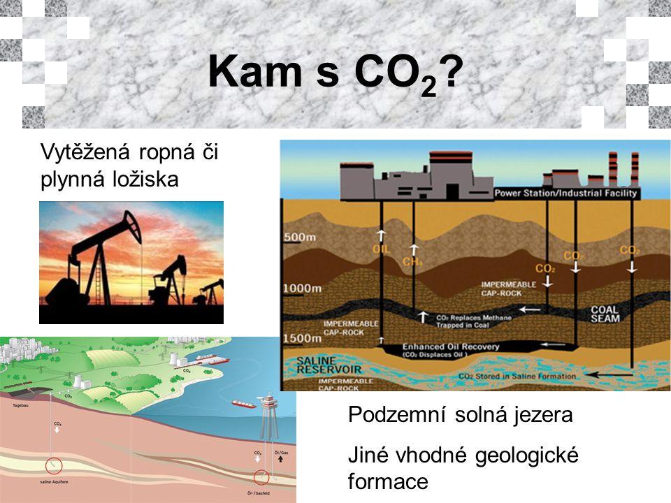 Kam s CO 2 Vytěžená ropná či plynná ložiska Podzemní solná jezera Jiné vhodné geologické formace