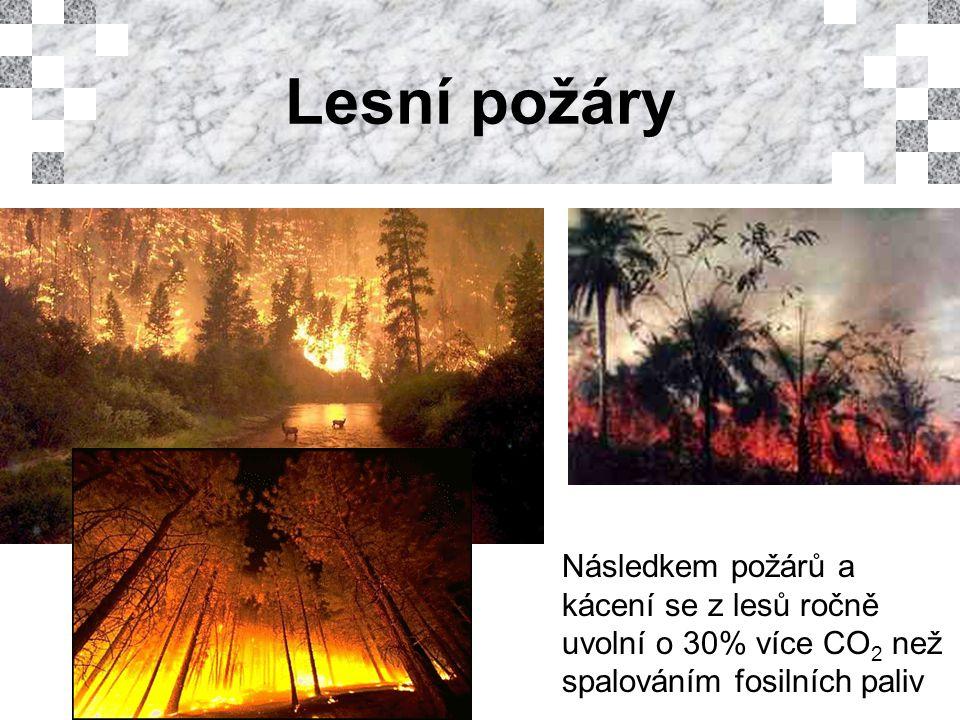 Lesní požáry Následkem požárů a kácení se z lesů ročně uvolní o 30% více CO 2 než spalováním fosilních paliv