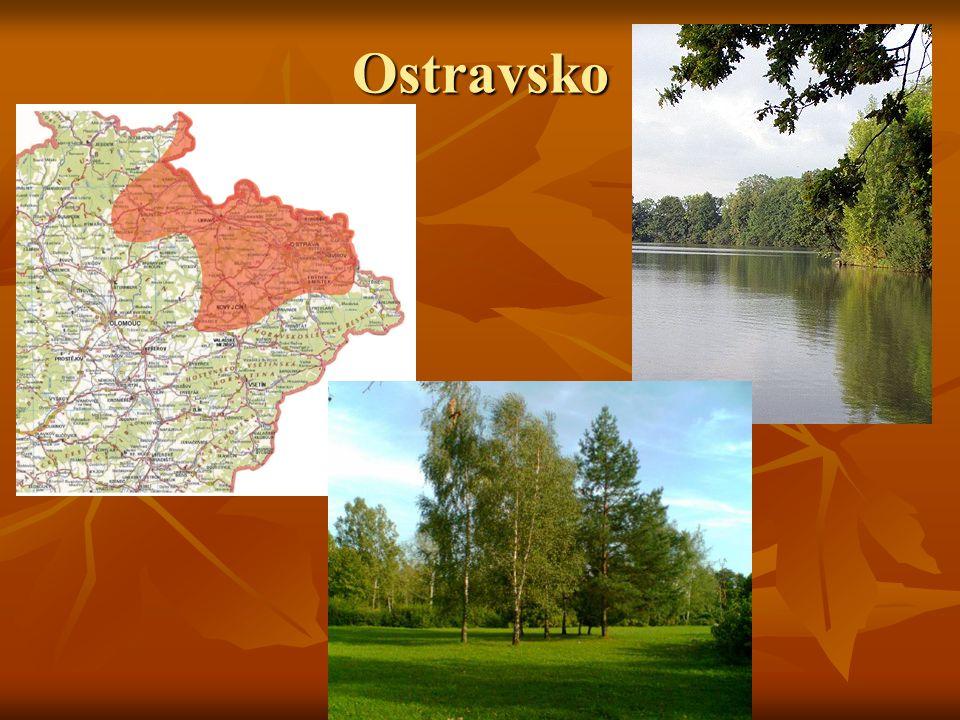 Zoo Ostrava Historie - V dubnu 1953 rozhodla o stavbě nové zoologické zahrady a začala tak složitá jednání výběru nové lokality pro přemístění zoo z Kunčiček.