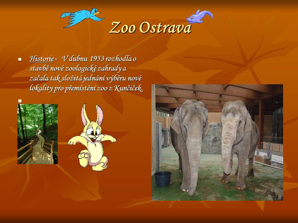 Zoo Ostrava Historie - V dubnu 1953 rozhodla o stavbě nové zoologické zahrady a začala tak složitá jednání výběru nové lokality pro přemístění zoo z K