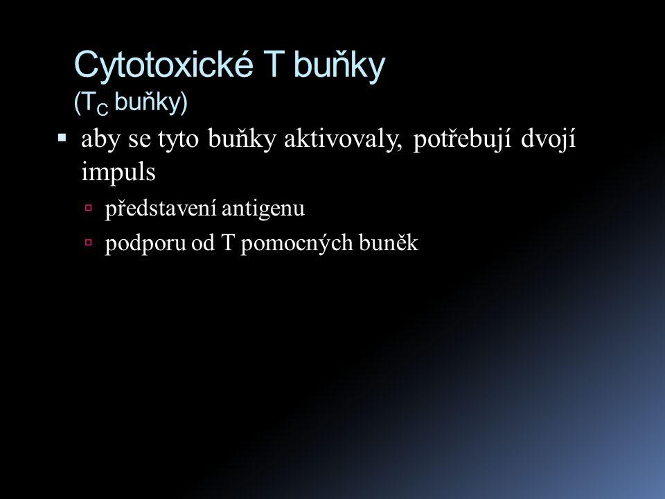 Cytotoxické T buňky (T C buňky)  Antigenem aktivované cytotoxické T buňky zabíjejí rakovinné buňky, nebo buňky napadené viry, bakteriemi či dalšími patogeny  všechny jaderné buňky našeho těla produkují MHC I.