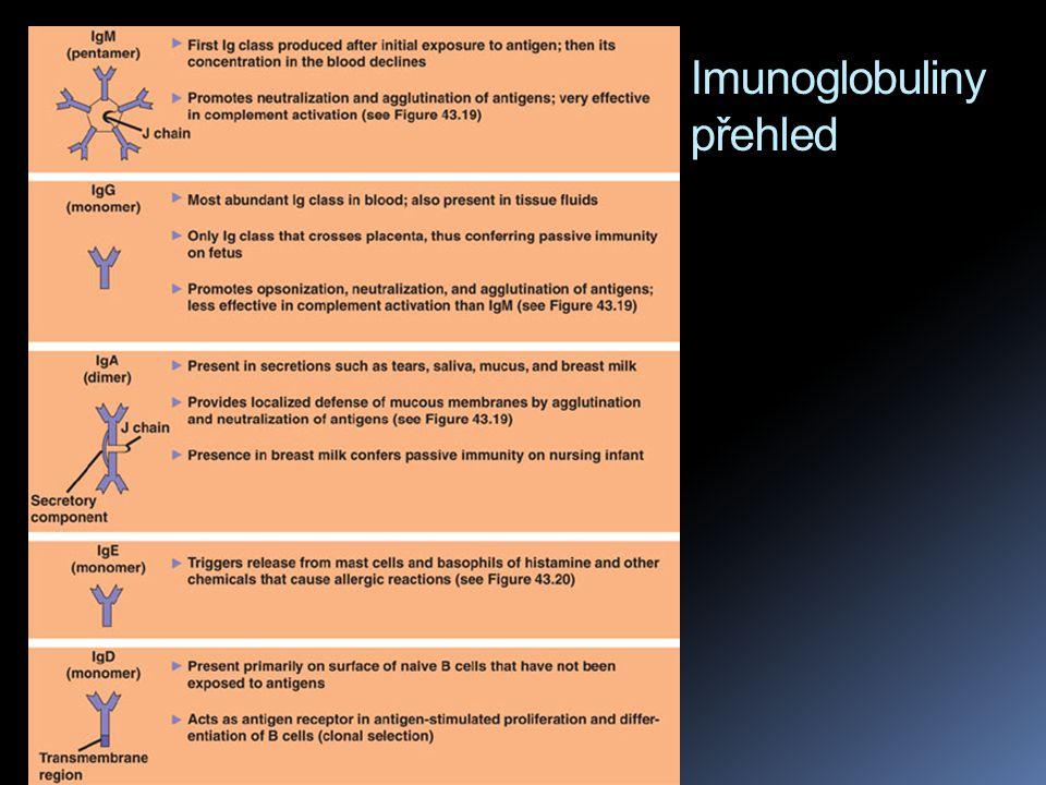 Imunoglobuliny přehled