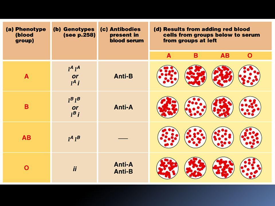 Nemoci imunitního systému  přehnaná reakce (alergie)  self-directed reakce (např.