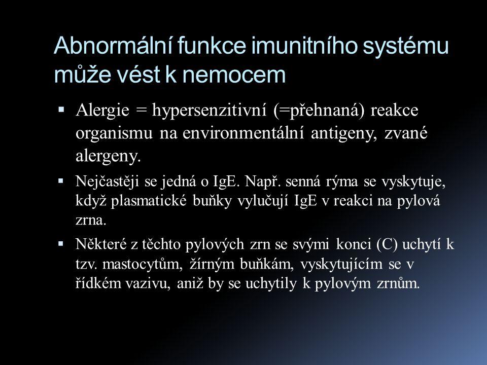 Abnormální funkce imunitního systému může vést k nemocem  Alergie = hypersenzitivní (=přehnaná) reakce organismu na environmentální antigeny, zvané a