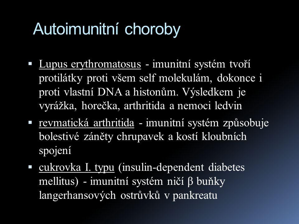 Autoimunitní choroby  Lupus erythromatosus - imunitní systém tvoří protilátky proti všem self molekulám, dokonce i proti vlastní DNA a histonům. Výsl