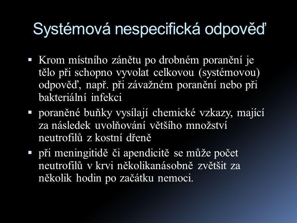 Systémová nespecifická odpověď  Krom místního zánětu po drobném poranění je tělo při schopno vyvolat celkovou (systémovou) odpověď, např. při závažné