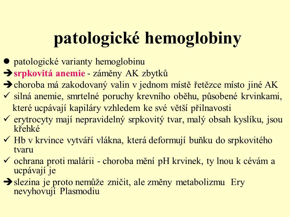 patologické hemoglobiny patologické varianty hemoglobinu  srpkovitá anemie - záměny AK zbytků  choroba má zakodovaný valin v jednom místě řetězce mí