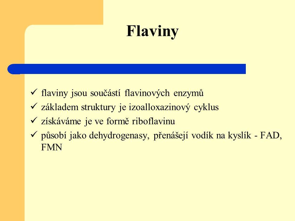 Flaviny flaviny jsou součástí flavinových enzymů základem struktury je izoalloxazinový cyklus získáváme je ve formě riboflavinu působí jako dehydrogen