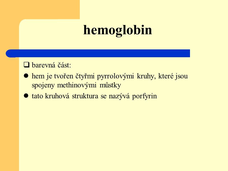 hemoglobin  barevná část: hem je tvořen čtyřmi pyrrolovými kruhy, které jsou spojeny methinovými můstky tato kruhová struktura se nazývá porfyrin