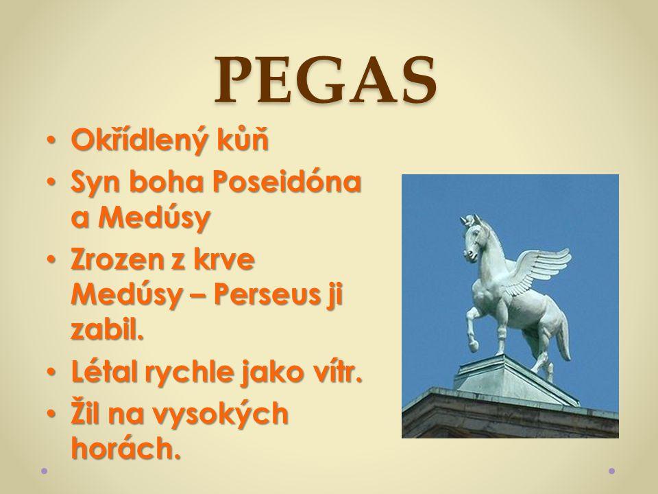 PEGAS Okřídlený kůň Okřídlený kůň Syn boha Poseidóna a Medúsy Syn boha Poseidóna a Medúsy Zrozen z krve Medúsy – Perseus ji zabil. Zrozen z krve Medús