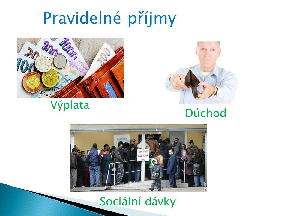 Zneužívání sociálních dávek