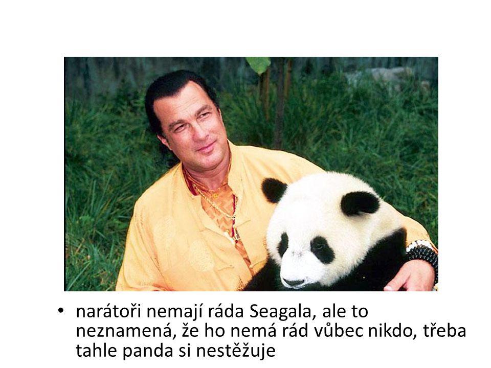 narátoři nemají ráda Seagala, ale to neznamená, že ho nemá rád vůbec nikdo, třeba tahle panda si nestěžuje