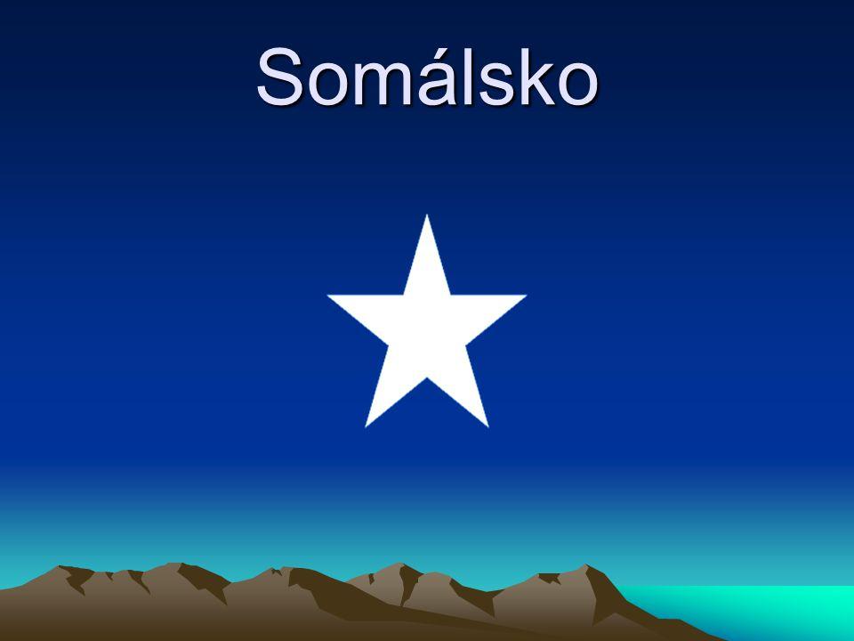 Hlavní město Hlavní město: Mogadišu Počet obyvatel: 982000 15% celkového obyvatestva Probíhá občanská válka Nejvíce obětí v oblasti Sii-Sii 144 mrtvých