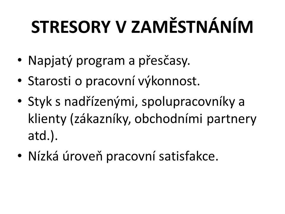STRESORY V ZAMĚSTNÁNÍM Napjatý program a přesčasy.