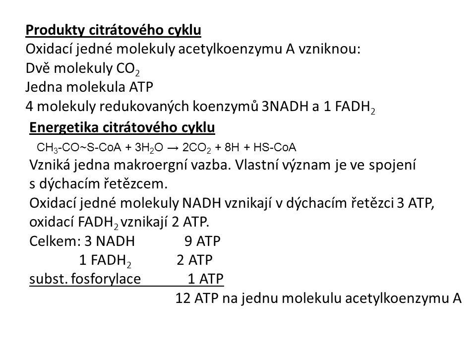 Produkty citrátového cyklu Oxidací jedné molekuly acetylkoenzymu A vzniknou: Dvě molekuly CO 2 Jedna molekula ATP 4 molekuly redukovaných koenzymů 3NADH a 1 FADH 2 Energetika citrátového cyklu CH 3 -CO~S-CoA + 3H 2 O → 2CO 2 + 8H + HS-CoA Vzniká jedna makroergní vazba.