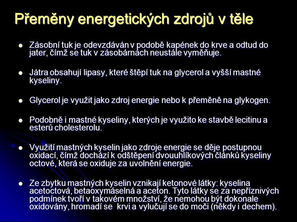 Přeměny energetických zdrojů v těle neutrální tuky glycerol + mastné kyseliny neutrální tuky játra glycerol + mastné kyseliny ketonové látky sacharidy tuk zásobárna tuku tuk sacharidyaminokyseliny ketoplastické CO 2 + H 2 O lecitin, estery cholesterolu Upraveno podle Karáska (2)