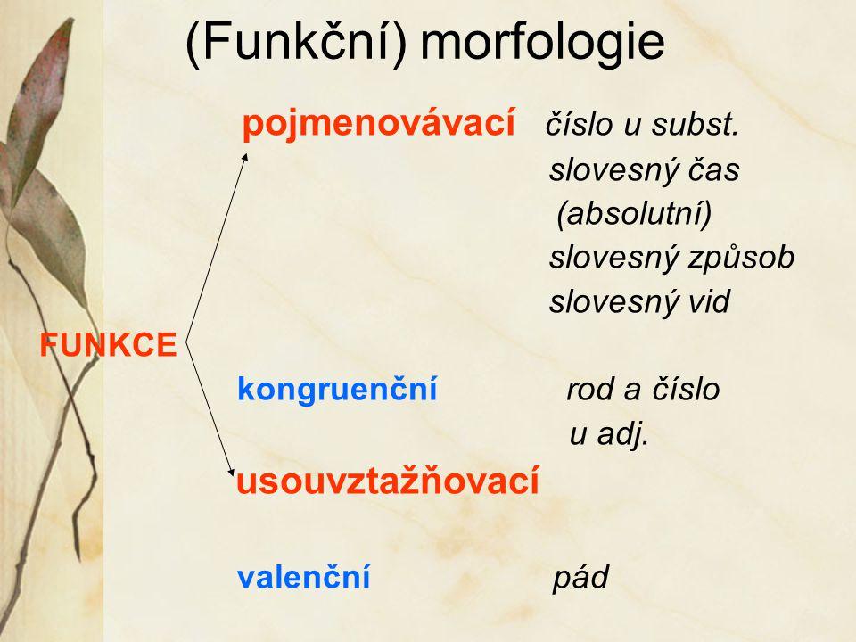 (Funkční) morfologie pojmenovávací číslo u subst. slovesný čas (absolutní) slovesný způsob slovesný vid FUNKCE kongruenční rod a číslo u adj. usouvzta