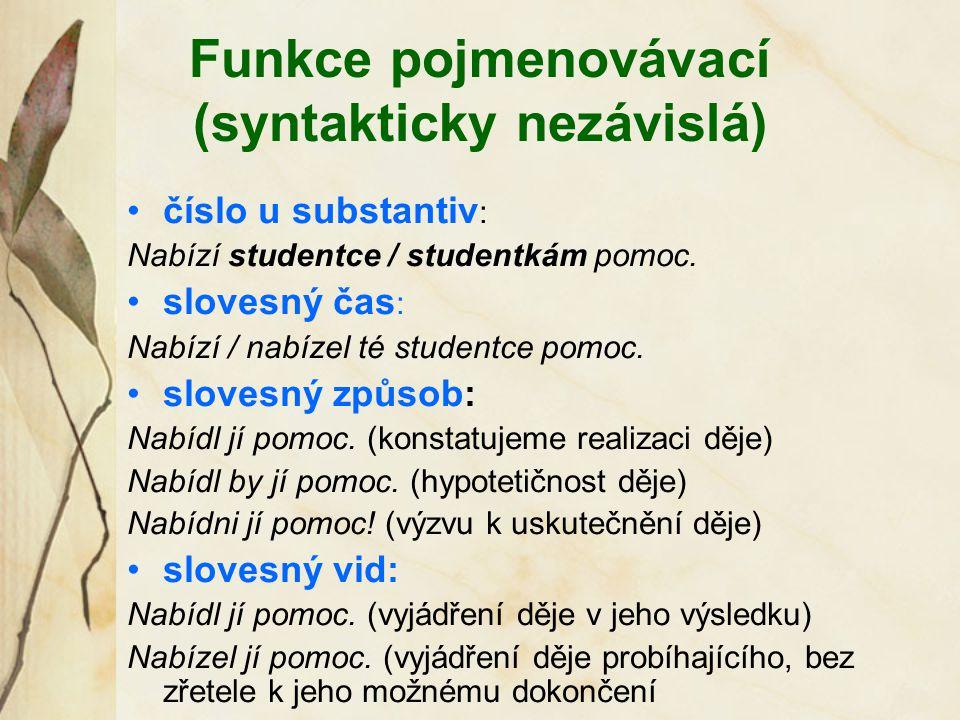 Funkce pojmenovávací (syntakticky nezávislá) číslo u substantiv : Nabízí studentce / studentkám pomoc. slovesný čas : Nabízí / nabízel té studentce po