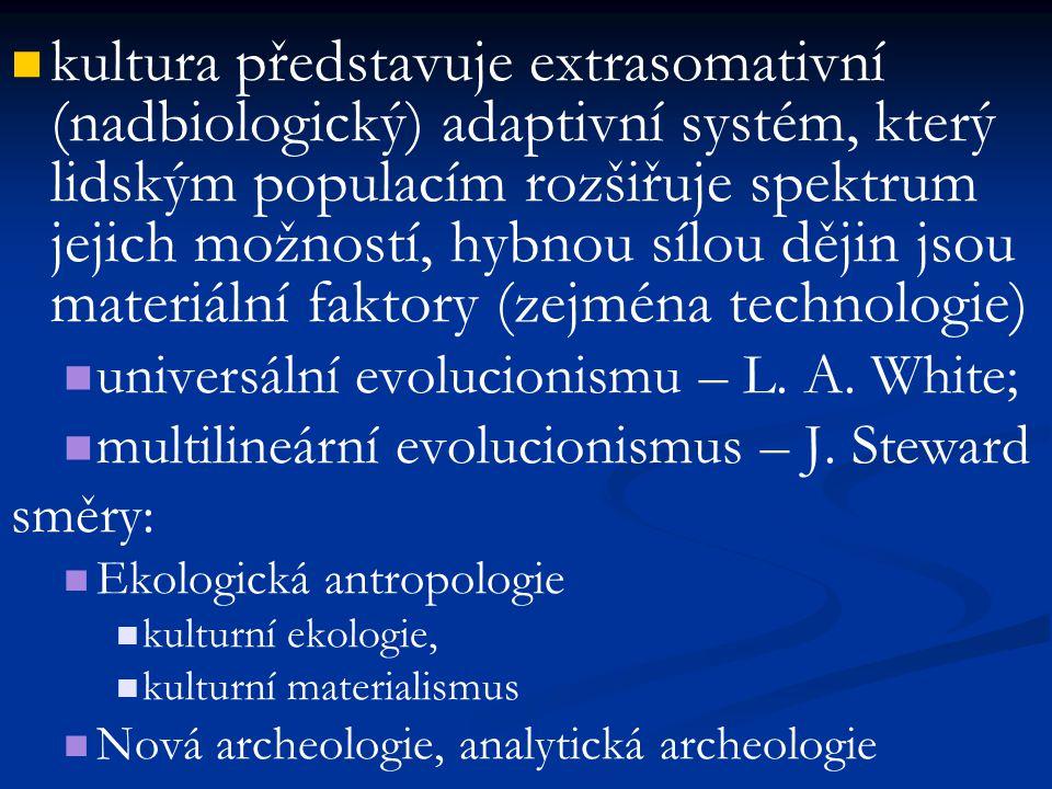 kultura představuje extrasomativní (nadbiologický) adaptivní systém, který lidským populacím rozšiřuje spektrum jejich možností, hybnou sílou dějin js