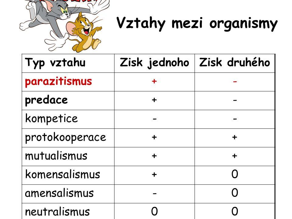 Vztahy mezi organismy Typ vztahuZisk jednohoZisk druhého parazitismus+- predace+- kompetice-- protokooperace++ mutualismus++ komensalismus+0 amensalismus-0 neutralismus00