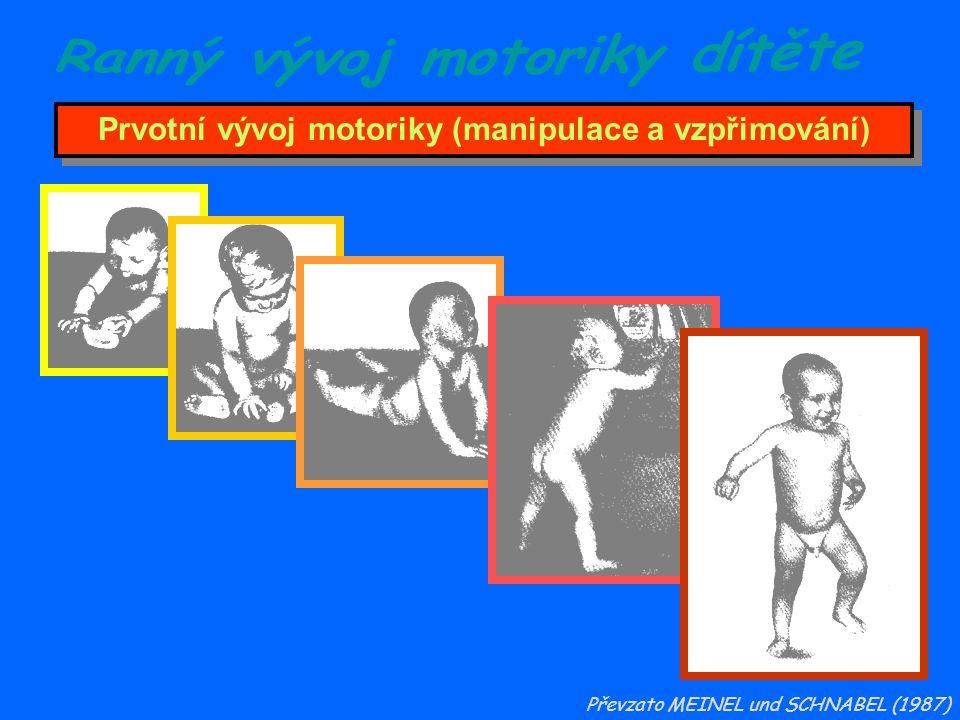 Prvotní vývoj motoriky (manipulace a vzpřimování) Převzato MEINEL und SCHNABEL (1987)