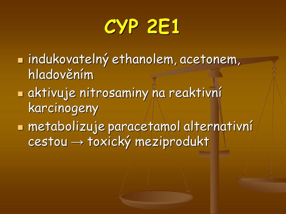CYP 2E1 indukovatelný ethanolem, acetonem, hladověním indukovatelný ethanolem, acetonem, hladověním aktivuje nitrosaminy na reaktivní karcinogeny aktivuje nitrosaminy na reaktivní karcinogeny metabolizuje paracetamol alternativní cestou → toxický meziprodukt metabolizuje paracetamol alternativní cestou → toxický meziprodukt