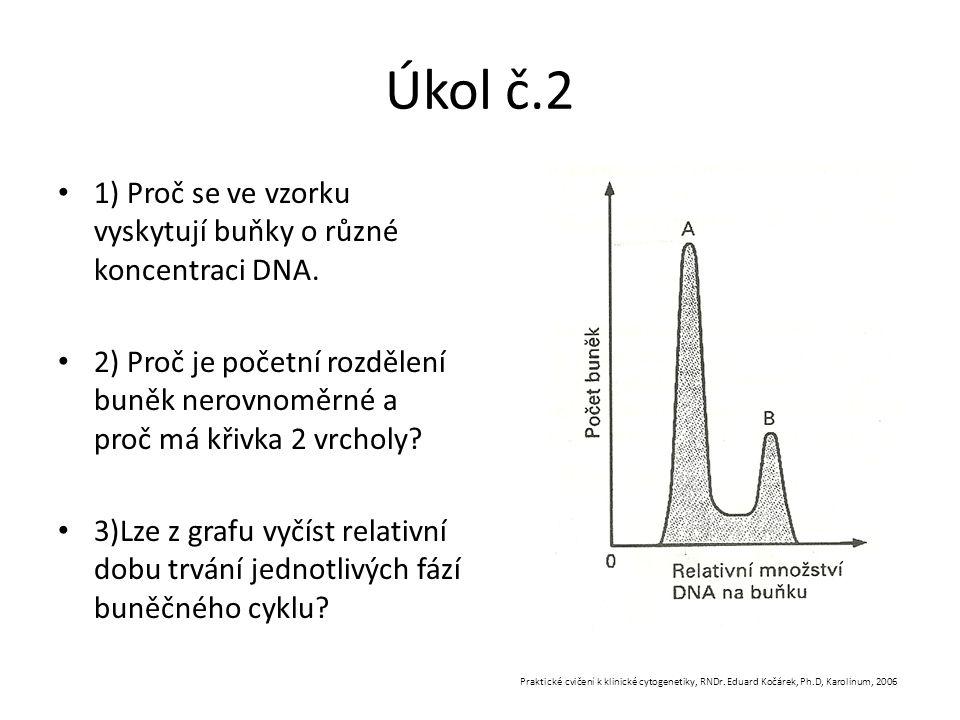 Úkol č.2 1) Proč se ve vzorku vyskytují buňky o různé koncentraci DNA. 2) Proč je početní rozdělení buněk nerovnoměrné a proč má křivka 2 vrcholy? 3)L