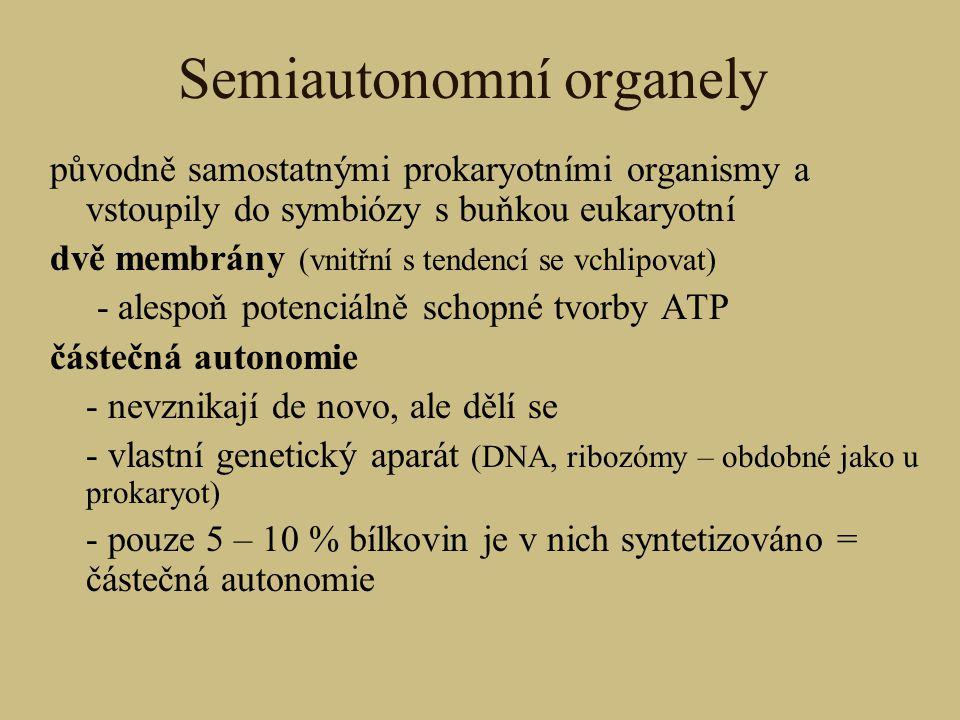 Semiautonomní organely původně samostatnými prokaryotními organismy a vstoupily do symbiózy s buňkou eukaryotní dvě membrány (vnitřní s tendencí se vc
