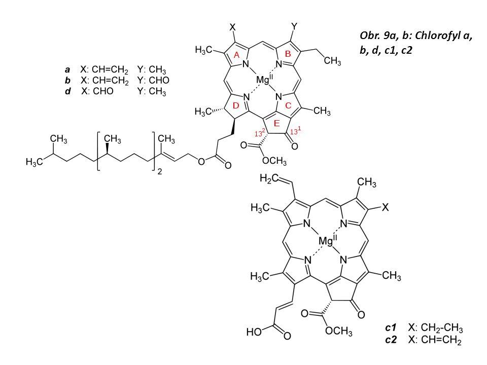 Obr. 9a, b: Chlorofyl a, b, d, c1, c2