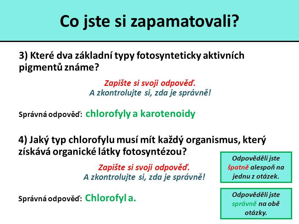Co jste si zapamatovali? 3) Které dva základní typy fotosynteticky aktivních pigmentů známe? Zapište si svoji odpověď. A zkontrolujte si, zda je správ