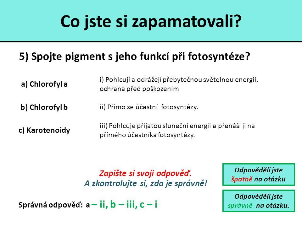 Co jste si zapamatovali? 5) Spojte pigment s jeho funkcí při fotosyntéze? Odpověděli jste špatně na otázku Odpověděli jste správně na otázku. Zapište