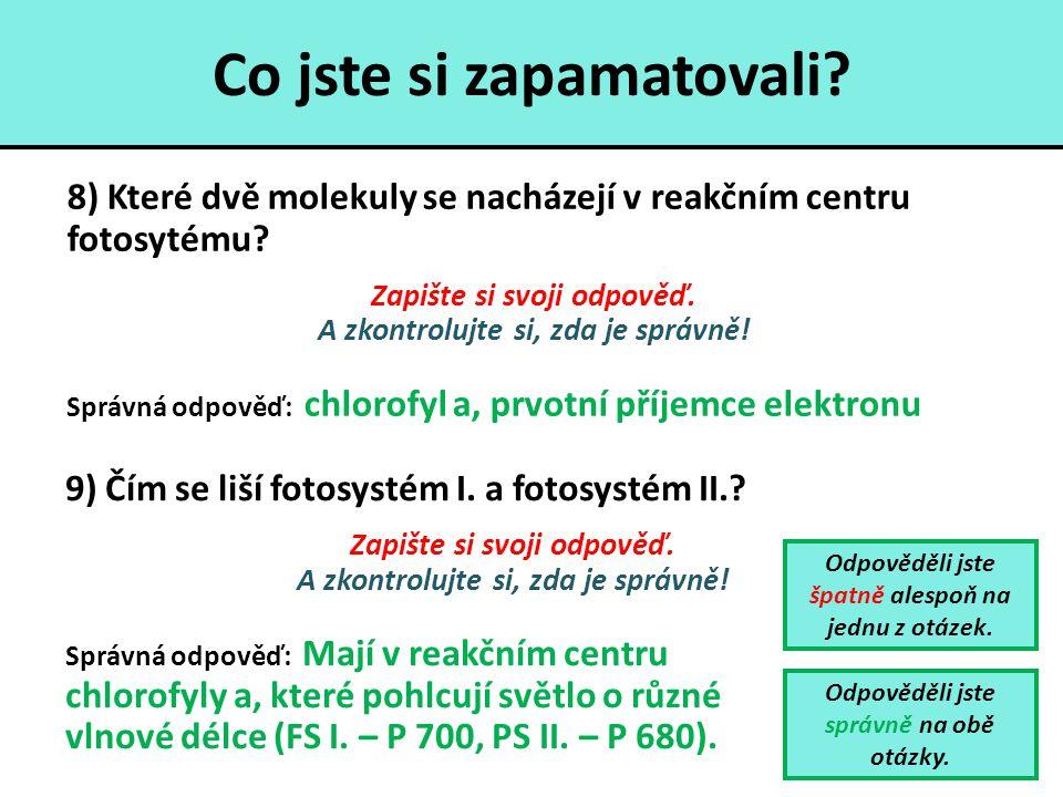 Co jste si zapamatovali? 8) Které dvě molekuly se nacházejí v reakčním centru fotosytému? Zapište si svoji odpověď. A zkontrolujte si, zda je správně!