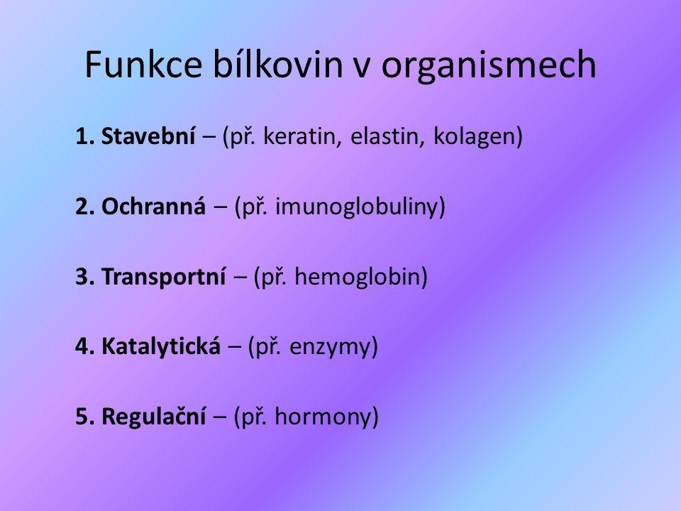 Funkce bílkovin v organismech 1. Stavební – (př. keratin, elastin, kolagen) 2. Ochranná – (př. imunoglobuliny) 3. Transportní – (př. hemoglobin) 4. Ka