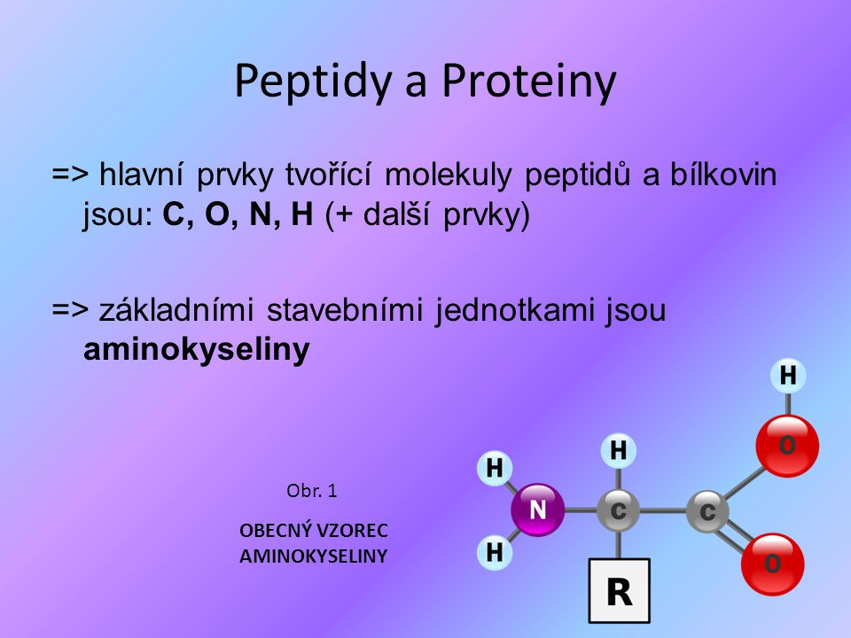 Peptidy a Proteiny => hlavní prvky tvořící molekuly peptidů a bílkovin jsou: C, O, N, H (+ další prvky) => základními stavebními jednotkami jsou amino