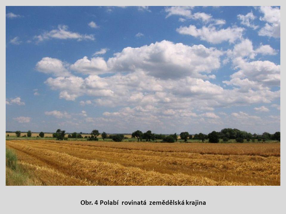 Obr. 4 Polabí rovinatá zemědělská krajina