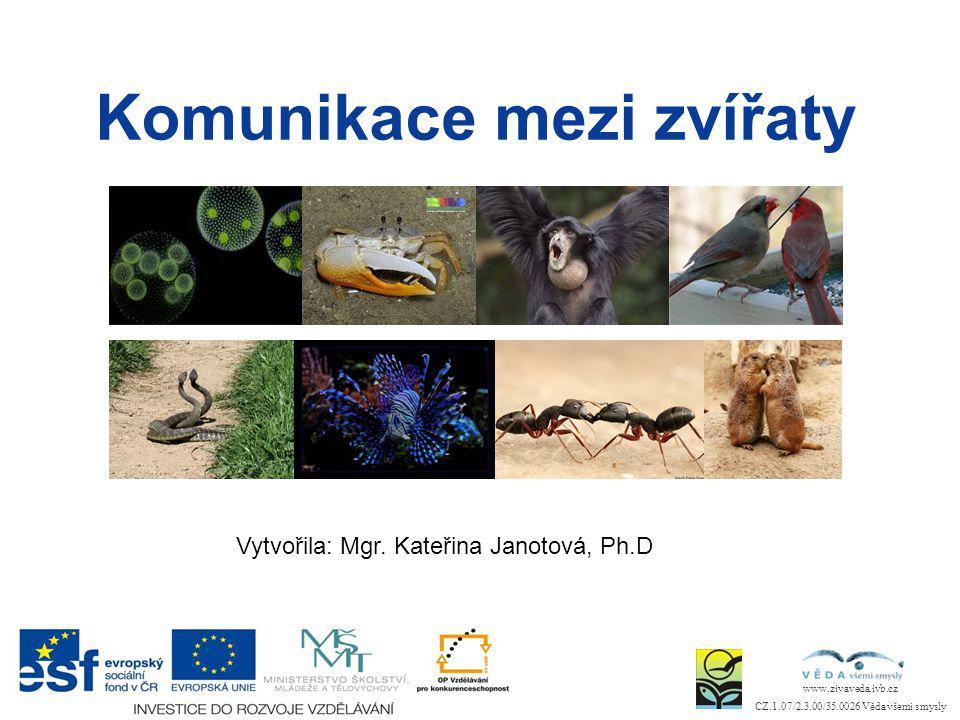Vytvořila: Mgr. Kateřina Janotová, Ph.D www.zivaveda.ivb.cz CZ.1.07/2.3.00/35.0026 Věda všemi smysly Komunikace mezi zvířaty