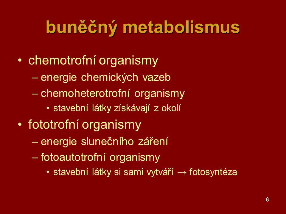 6 buněčný metabolismus chemotrofní organismy –energie chemických vazeb –chemoheterotrofní organismy stavební látky získávají z okolí fototrofní organismy –energie slunečního záření –fotoautotrofní organismy stavební látky si sami vytváří → fotosyntéza