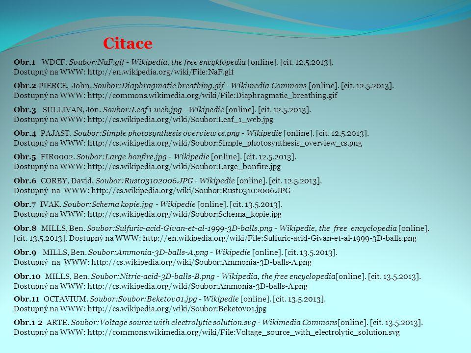 Citace Obr.3 SULLIVAN, Jon. Soubor:Leaf 1 web.jpg - Wikipedie [online]. [cit. 12.5.2013]. Dostupný na WWW: http://cs.wikipedia.org/wiki/Soubor:Leaf_1_
