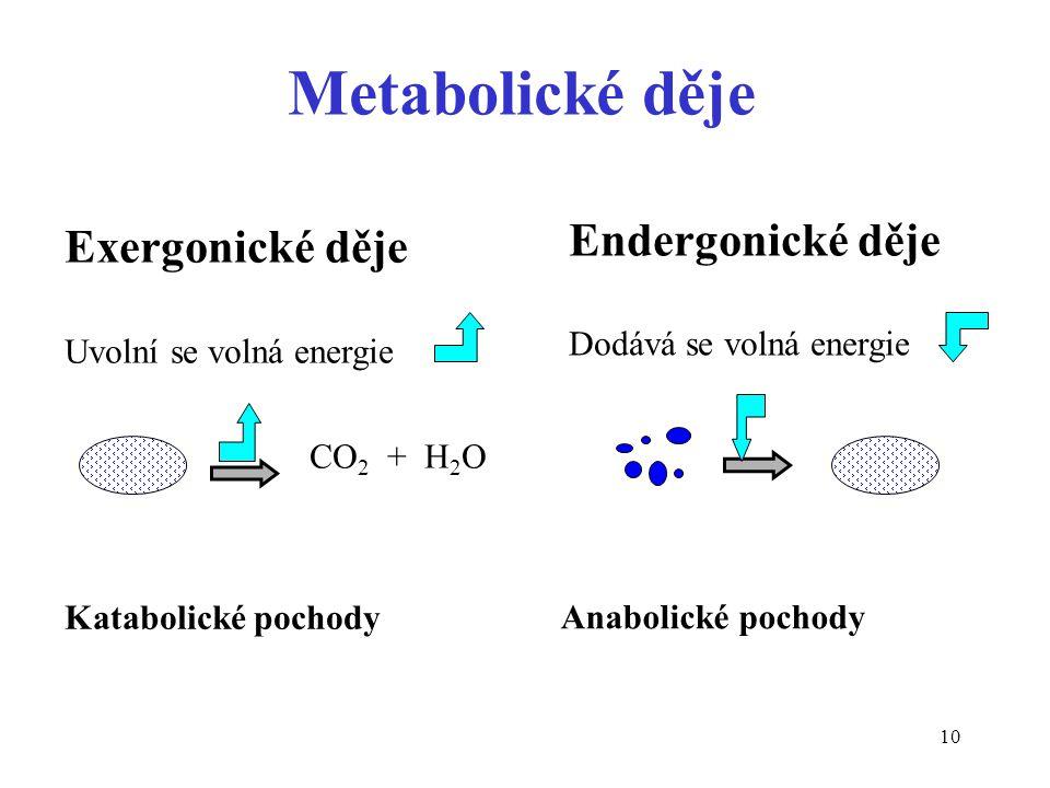 10 Metabolické děje Exergonické děje Uvolní se volná energie CO 2 + H 2 O Endergonické děje Dodává se volná energie Katabolické pochody Anabolické poc