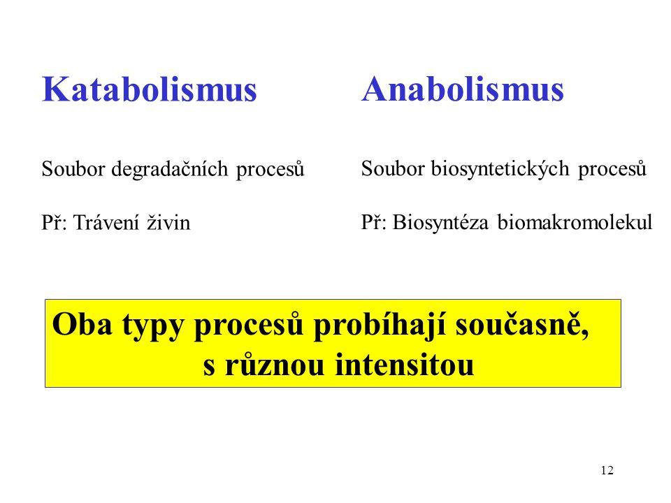 12 Katabolismus Soubor degradačních procesů Př: Trávení živin Anabolismus Soubor biosyntetických procesů Př: Biosyntéza biomakromolekul Oba typy proce