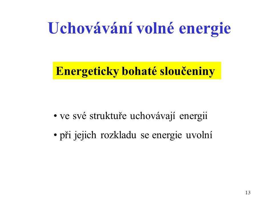 13 Uchovávání volné energie Energeticky bohaté sloučeniny ve své struktuře uchovávají energii při jejich rozkladu se energie uvolní