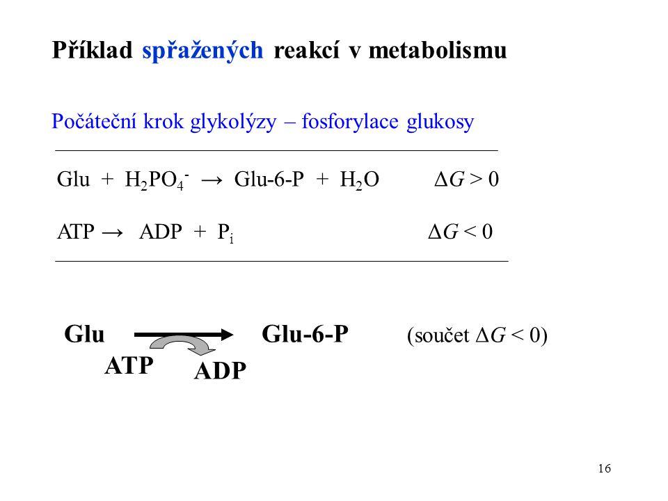 16 Příklad spřažených reakcí v metabolismu Počáteční krok glykolýzy – fosforylace glukosy Glu + H 2 PO 4 - → Glu-6-P + H 2 O ΔG > 0 ATP → ADP + P i ΔG