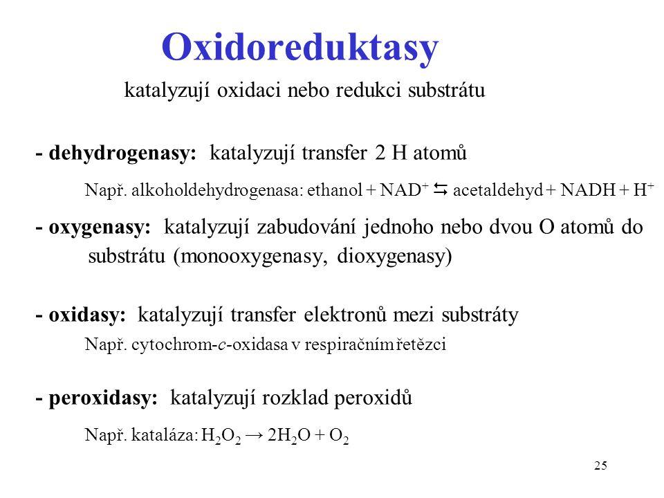 25 Oxidoreduktasy - dehydrogenasy: katalyzují transfer 2 H atomů Např. alkoholdehydrogenasa: ethanol + NAD +  acetaldehyd + NADH + H + - oxygenasy: k