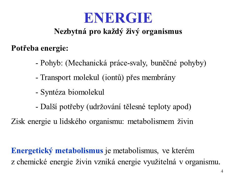 15 Chemická energie ATP se využívá například na: chemickou práci (syntézy, spřažení dvou reakcí) mechanickou práci (pohyb molekul, buněk, organismu) elektroosmotickou práci (transport iontů - viz tabulka) Průměrné koncentrace vybraných iontů (mmol/l): Tekutina Na + K+K+ ECT ICT 140 10 4 160