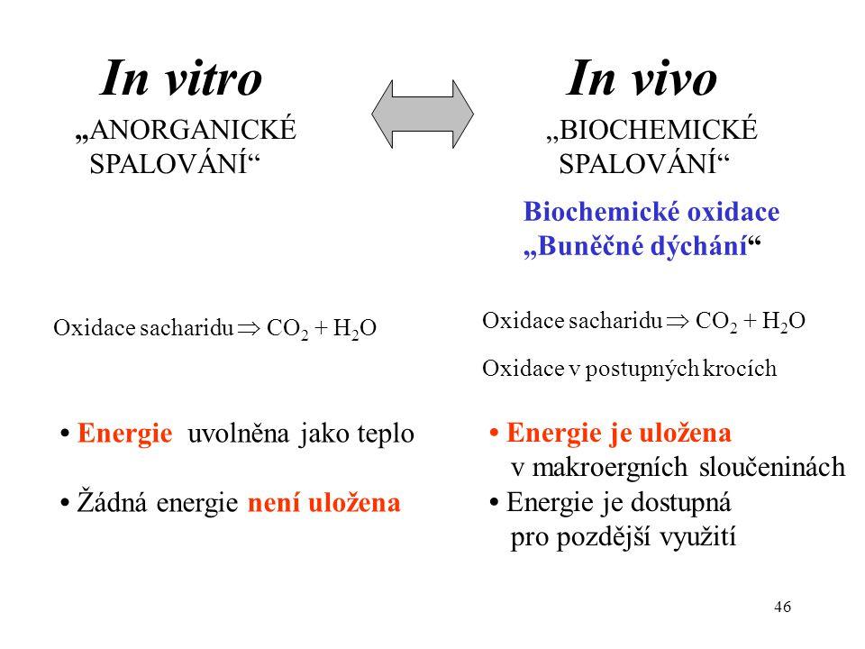 """46 """"ANORGANICKÉ """"BIOCHEMICKÉ SPALOVÁNÍ"""" SPALOVÁNÍ"""" Energie je uložena v makroergních sloučeninách Energie je dostupná pro pozdější využití Energie uvo"""