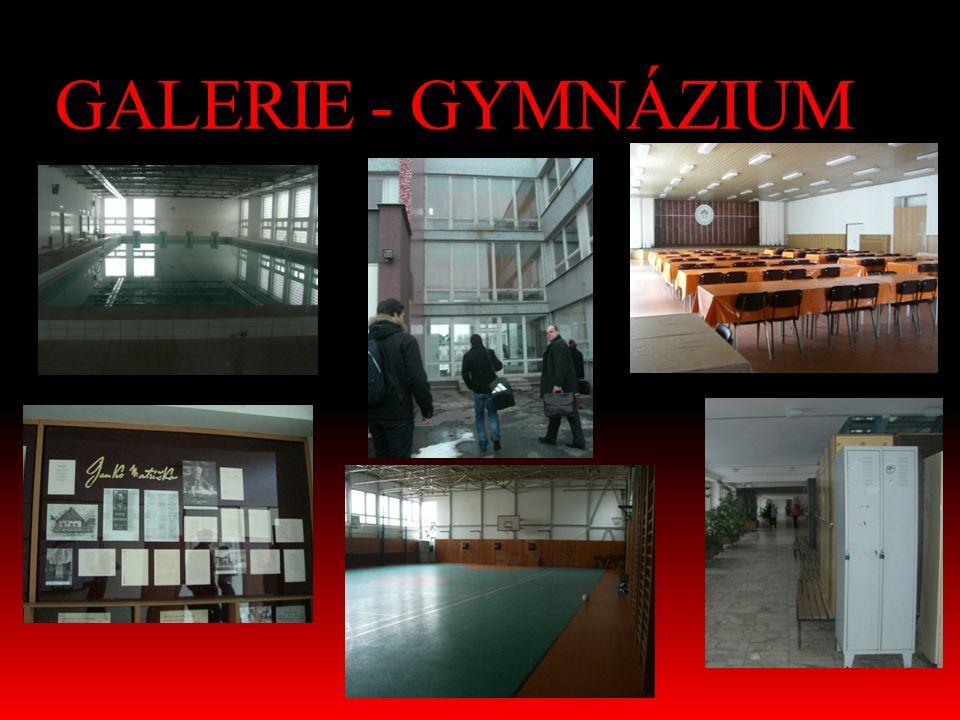 GALERIE - GYMNÁZIUM