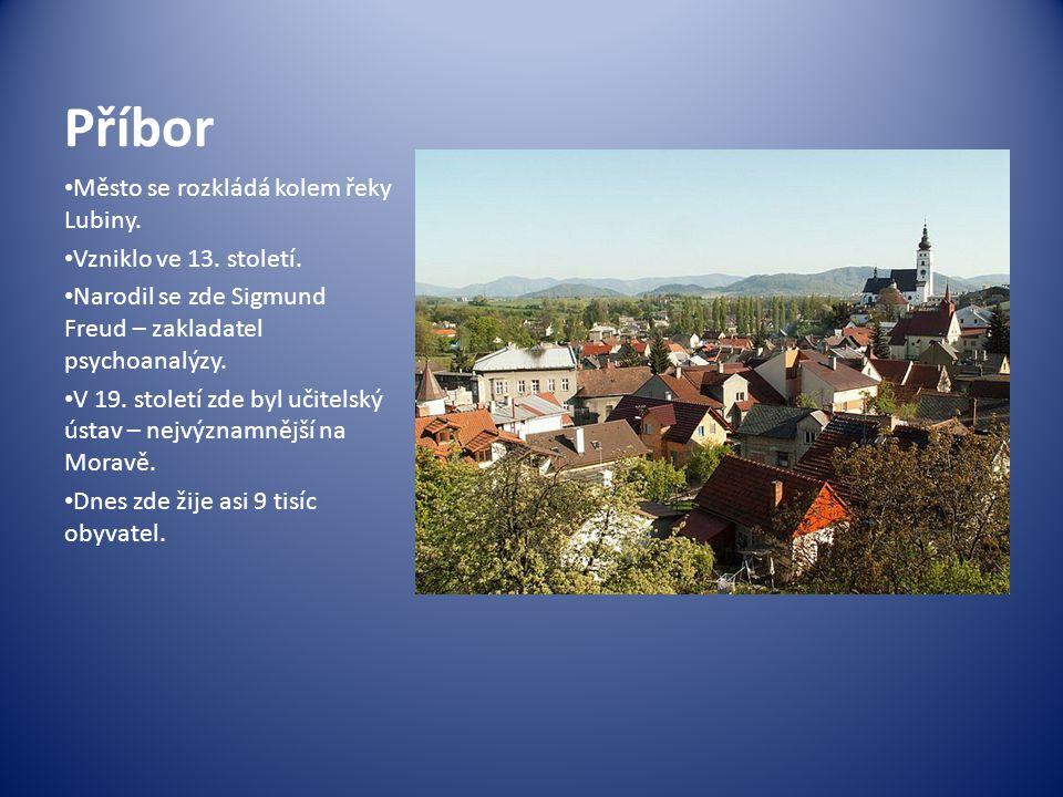 Příbor Město se rozkládá kolem řeky Lubiny. Vzniklo ve 13. století. Narodil se zde Sigmund Freud – zakladatel psychoanalýzy. V 19. století zde byl uči