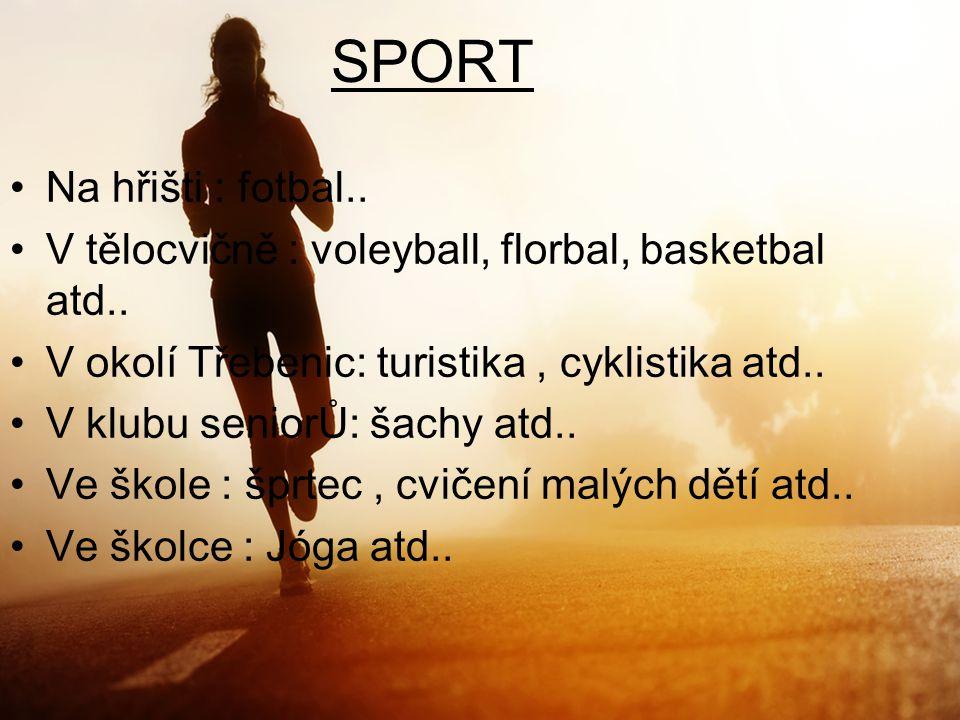 SPORT Na hřišti : fotbal.. V tělocvičně : voleyball, florbal, basketbal atd.. V okolí Třebenic: turistika, cyklistika atd.. V klubu seniorŮ: šachy atd