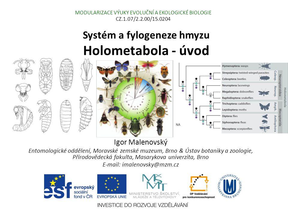 Systém a fylogeneze hmyzu Holometabola - úvod Igor Malenovský Entomologické oddělení, Moravské zemské muzeum, Brno & Ústav botaniky a zoologie, Přírod